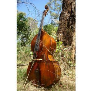 product-the-bushman-puglisi-double-bass-db-the-bushman